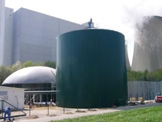 Biomasse-Anlage Neurath